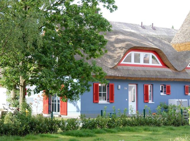 Reetdachhaus 300 m zum Strand, Sauna, Kamin - Glowe - Hus