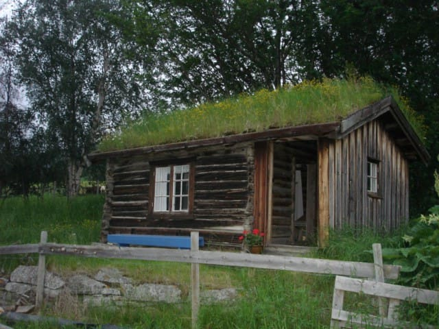 Charming, old log cabin with a great view. - Lesja - Cabin
