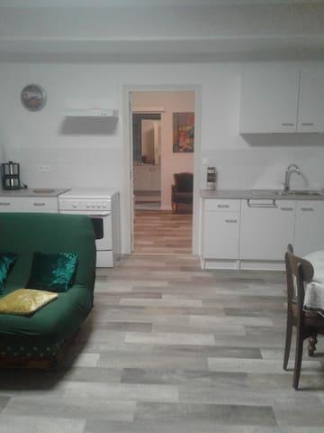Aperçu sur le séjour, la cuisine, salle à manger, suivie de la chambre et de la  salle de bain