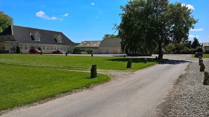 Lauesgård 1.