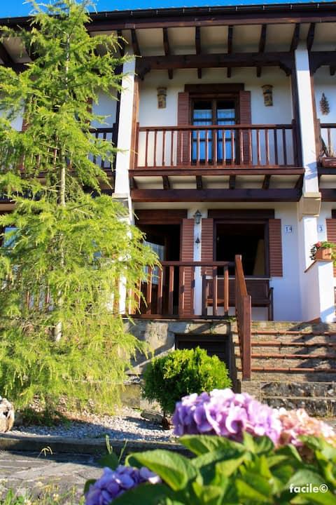 A mountain-style house.
