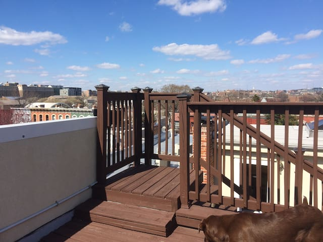 Large floor-thru w double roof deck - Washington - Appartamento