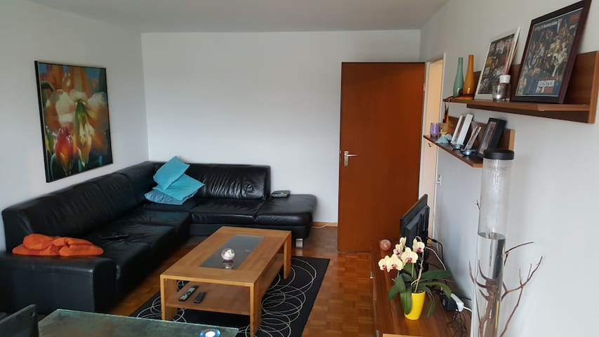 Apartment close to Basel - Pratteln
