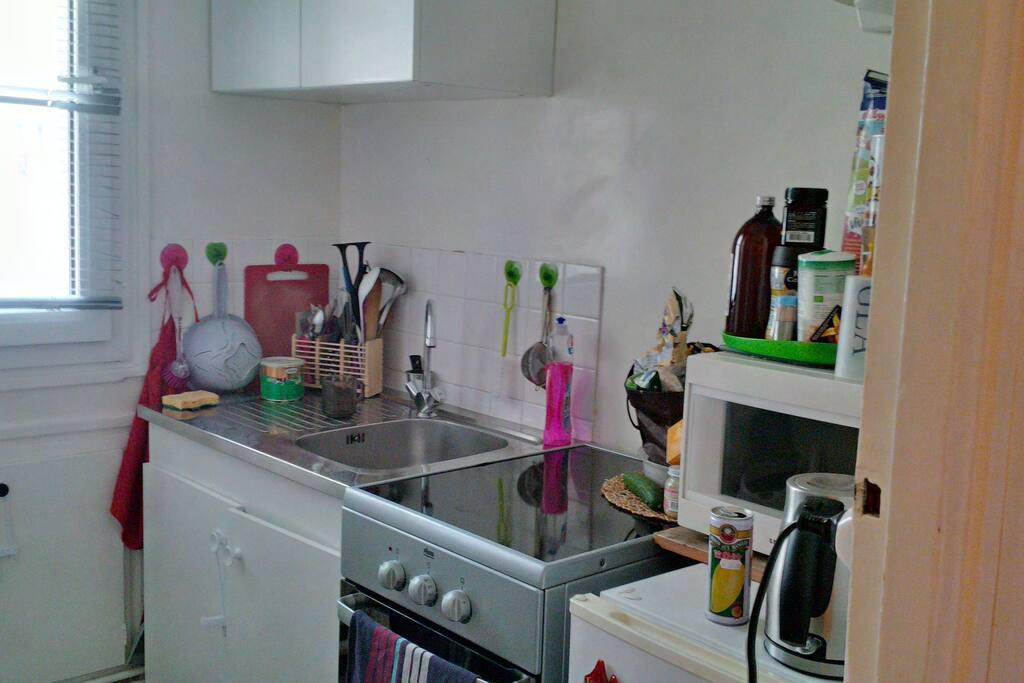 cuisine équipée d'un frigo, micro onde, four, plauqe vitro céramiques.....