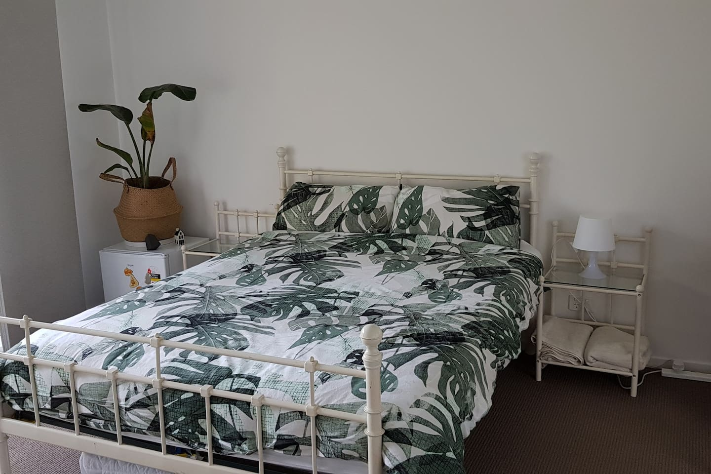 Comfortable queen bed and single mattrass if needed