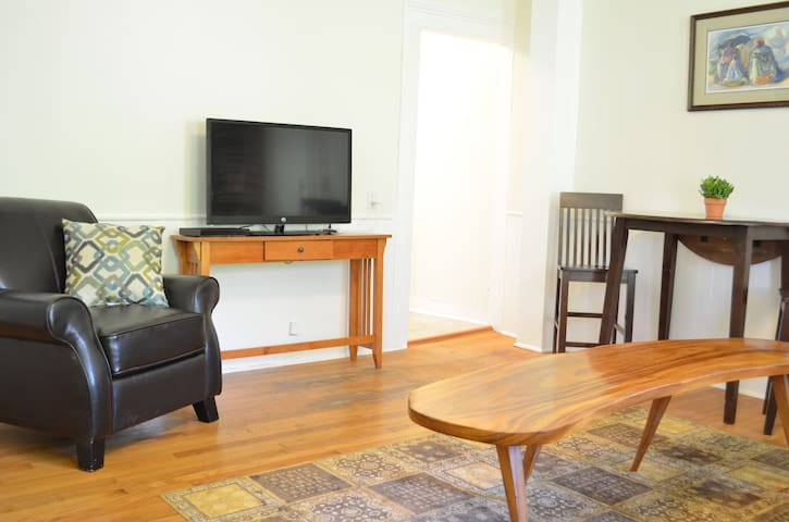 Bright and Spacious Apartment in downtown Ithaca