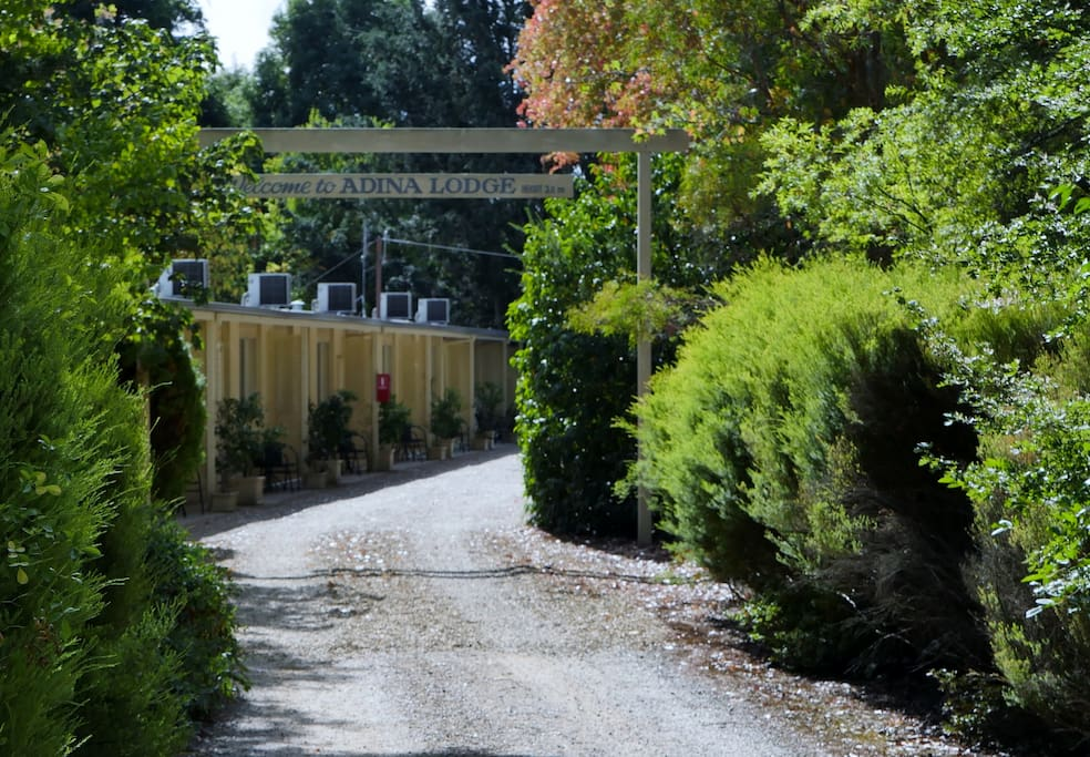Come on in to  stay at Adina Lodge. Simply but lovely; Country Style.