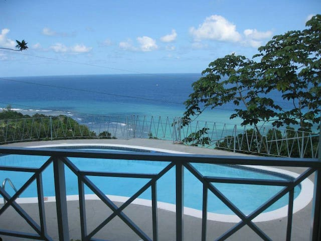 Private Villa with Private Pool & Pvt Beach Access - Boscobel - Casa