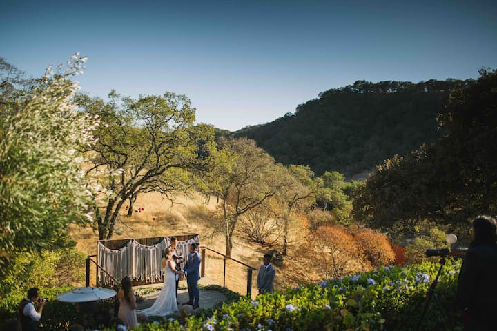 Wedding vows, natural backdrop just off bocce court