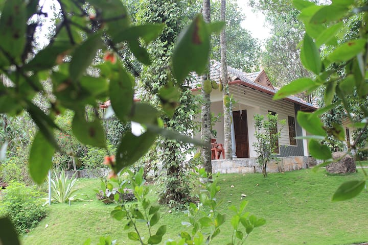 Yoga Cottage - Idukki
