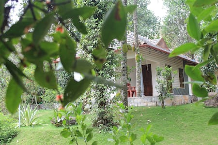 Yoga Cottage - Idukki - Villa