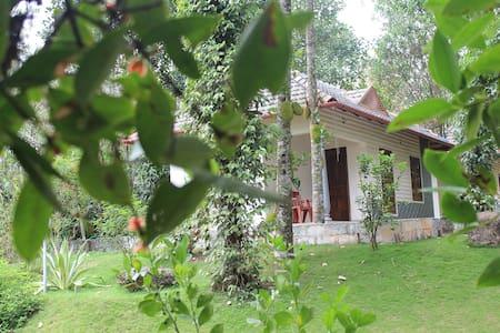 Yoga Cottage - Idukki - Huvila