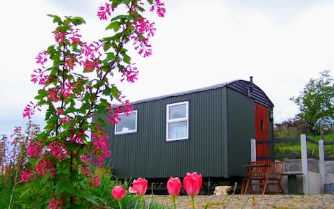 Big shepherds hut, glamping pod,cabin  with panoramic countryside views of mountains and lake.