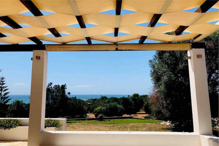 Afrodite in the Olive Grove: Delux Exclusive Villa