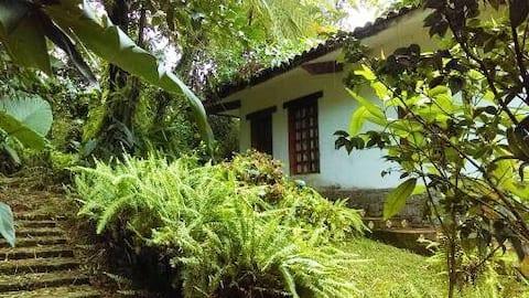 Cabaña en Cuetzalan centro.