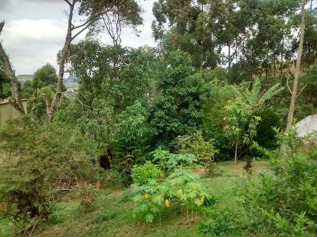 Sofá Cama em casa Arborizada - Santana de Parnaíba - House