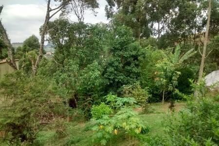 Sofá Cama em casa Arborizada - Santana de Parnaíba - Rumah