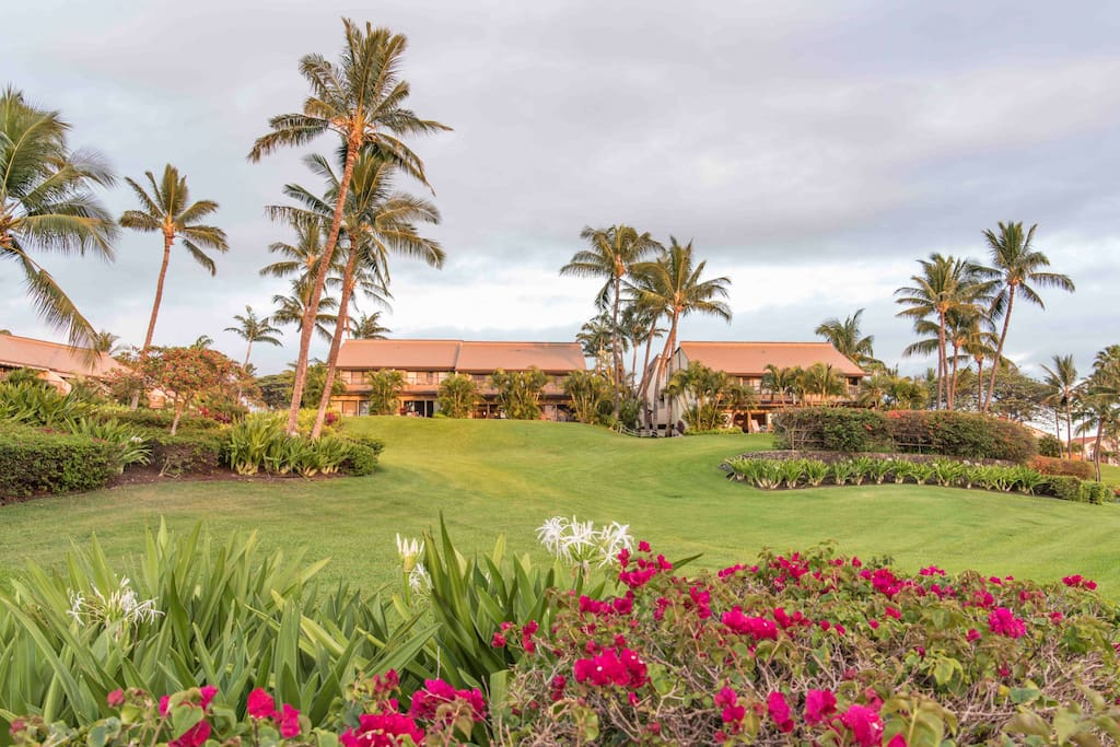 Maui Kamaole Community Landscape