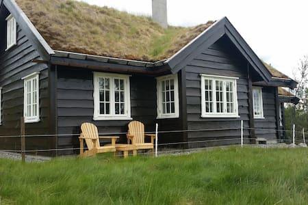 Nyere, innholdsrik hytte ved Haglebu, Eggedal