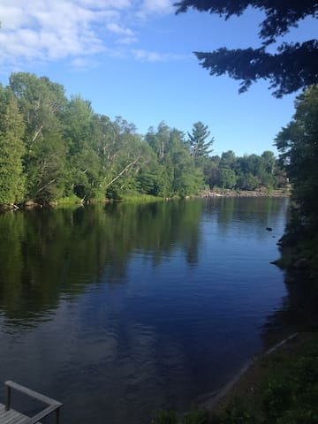 view up the river, watch for birds and wildlife