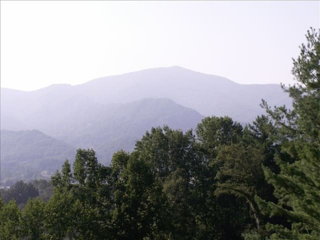Mountain Getaway with Fabulous View - Waynesville - Apartment