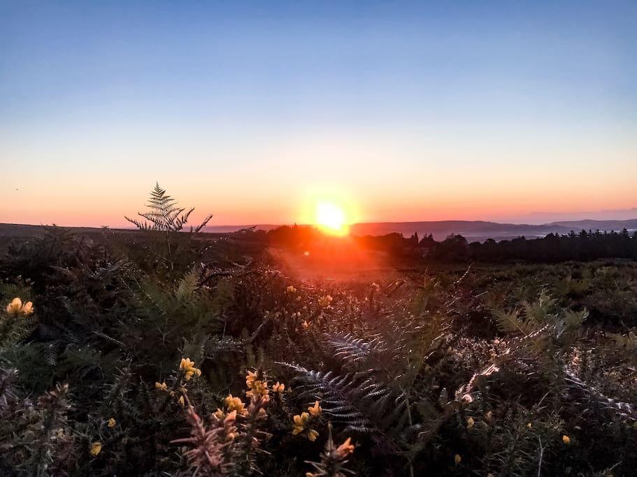 Sunrise at Haytor