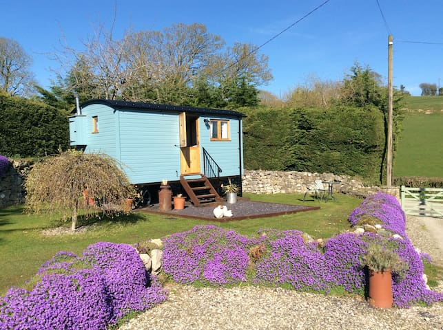 Cosy Hut in the Hills - Hendre, Nr Mold N.Wales