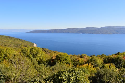 Villa Emillia - place of dream vacations