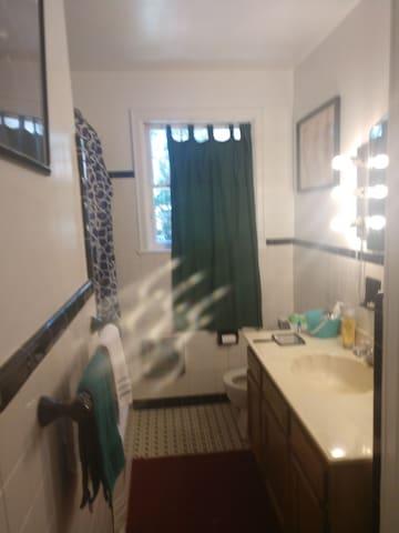 THE BATHROOM.....shower and bathtub