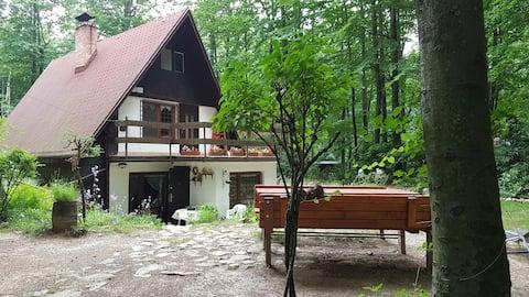 Gezellig huisje in het hart van de Kleine Karpaten