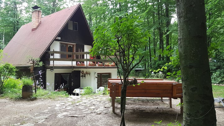 Cozy cottage in the heart of the Small Carpathians