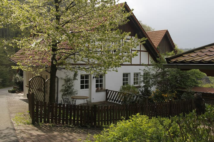 Home to the forest - Horn-Bad Meinberg - Huis