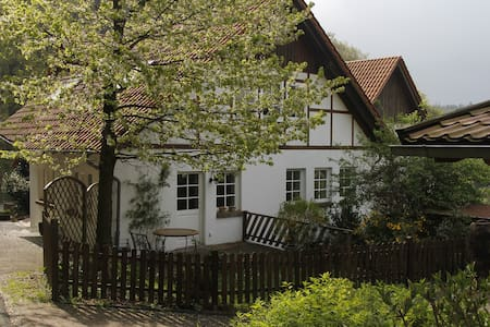 Home to the forest - Horn-Bad Meinberg - Haus