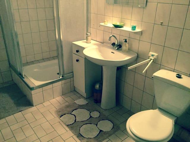 Sanitaires comprenant douche et toilettes
