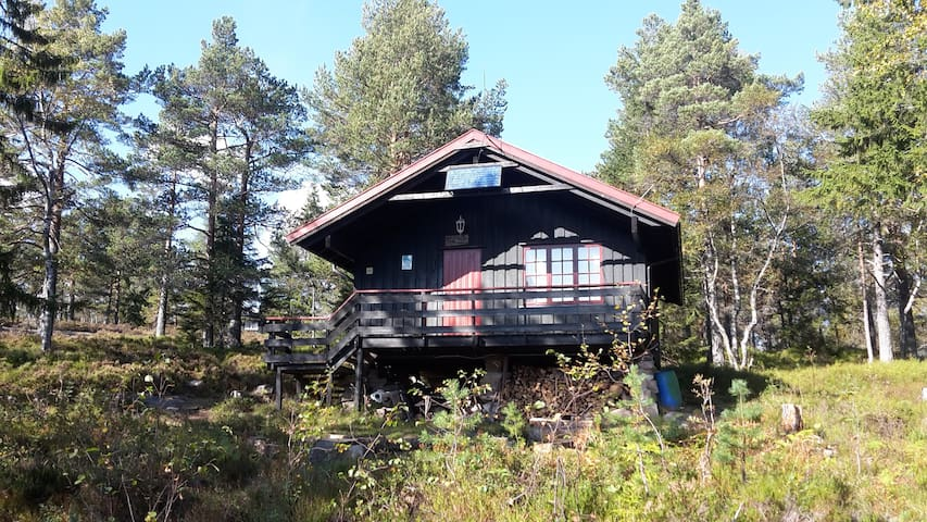 Tuva, 1.Drammens hytte - Drammen