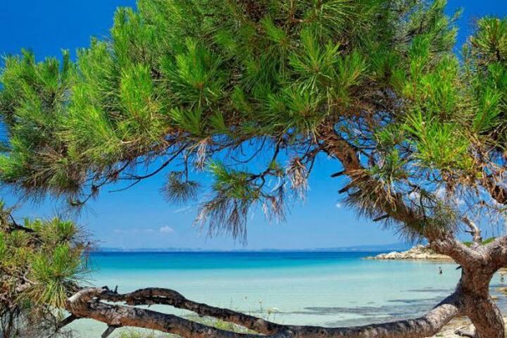 LUXE • Greek Paradise 3BR Villa Sani Resort