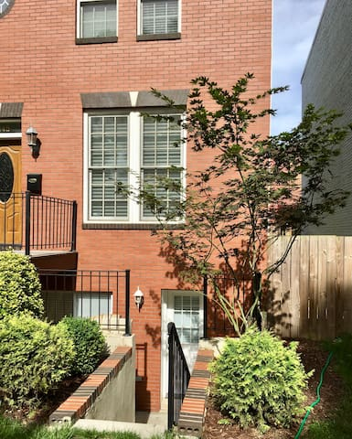 Bright 1 BR Apt. in DC Atlas District
