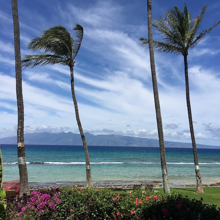 West Maui Ocean-front, live 4-5 weeks in paradise!