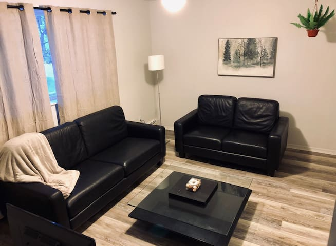 Downtown Apt. Walk 2 TD Place/Canal. Free Parking!