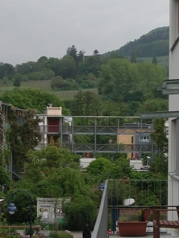 Entspannung in Freiburg-Vauban