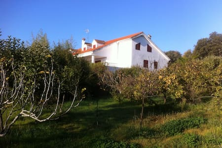 Villa near Cáceres