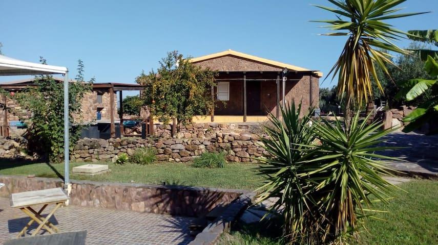 casa vacanze alghero sole e relax f.piscina