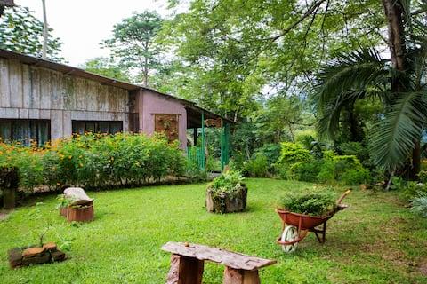 Sitio Paraíso - Casa de Campo. Corupá/SC
