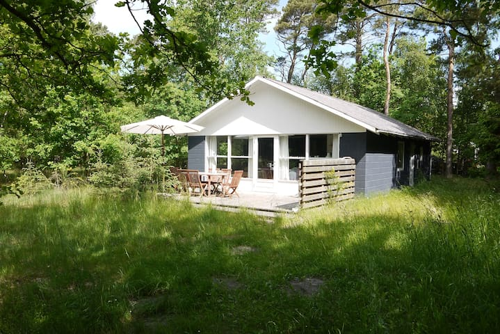 Sommerhus på naturgrund ved børnevenlig sandstrand - Store Fuglede - Stuga