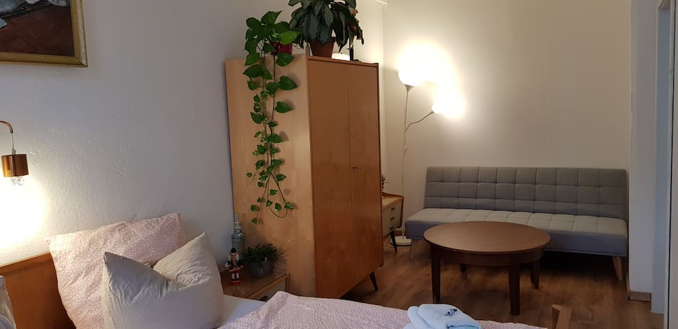 Apartmentroom i.t. Center of Dresden  for 4 people