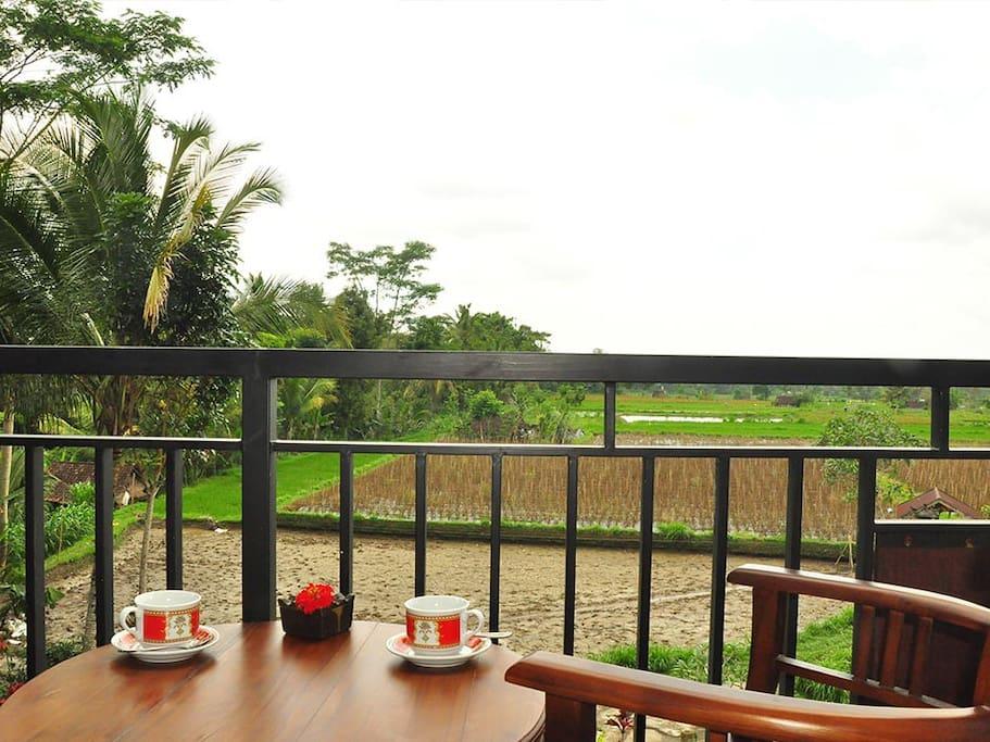 rice view