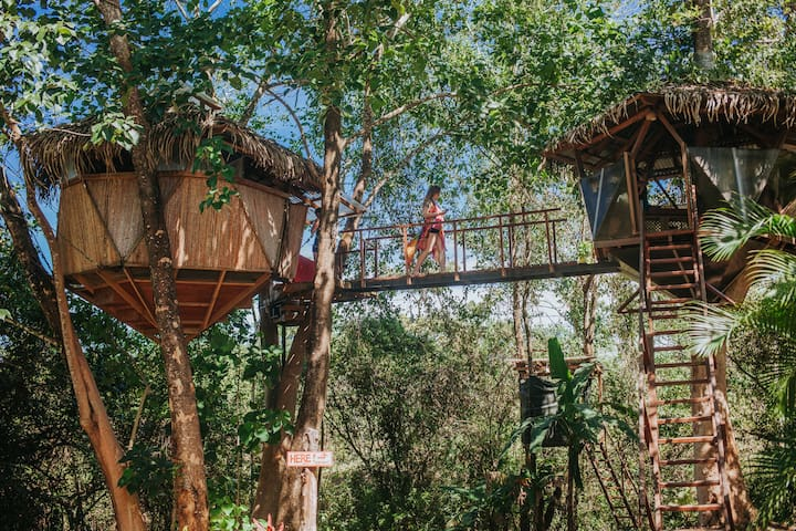 Sacred Geome-Tree House