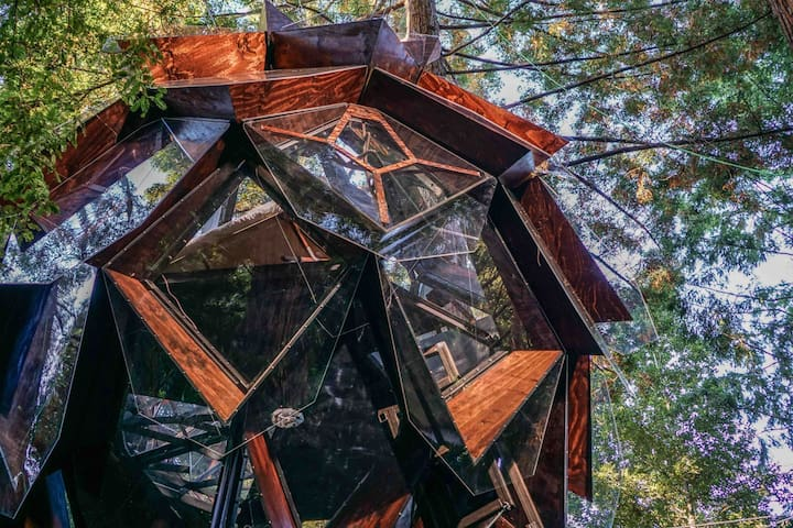 Almost entirely made of windows, the Pinecone Treehouse lends a 360 view of the surrounding forest.