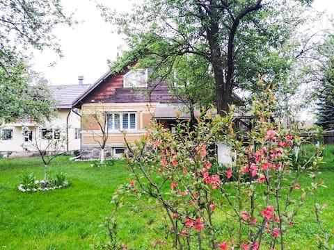 Casa traditionala Subcetate