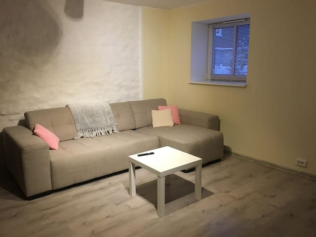 Very good location, newly renovated city apartment - Tallinn - Byt
